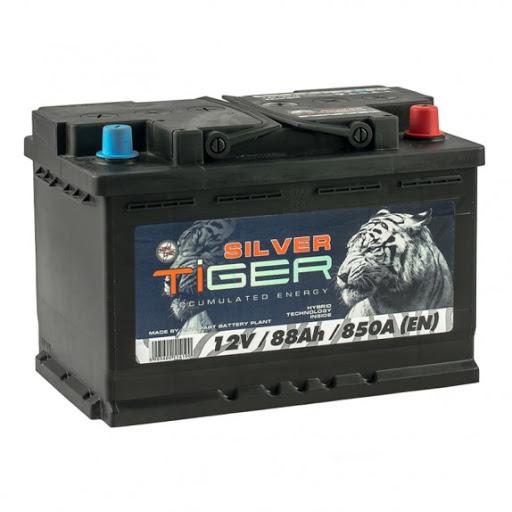 Tiger Silver